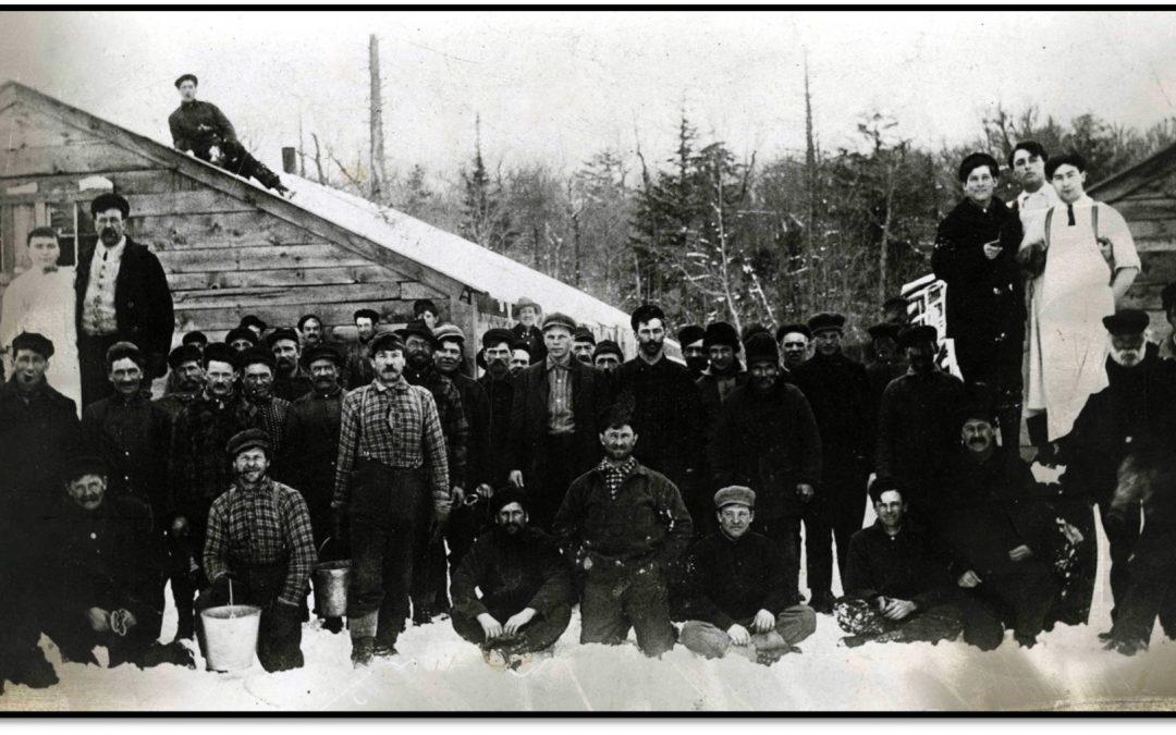 Among the Lumber Laddies