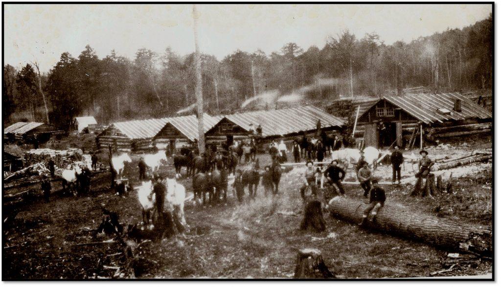 Hillside Logging Camp, ca pre- 1900
