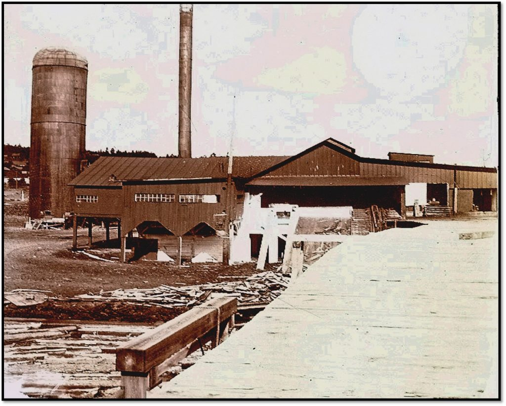 Millpond and Henry J Wachsmuth Lumber Mill ca 1920 BHA 1980.4.12