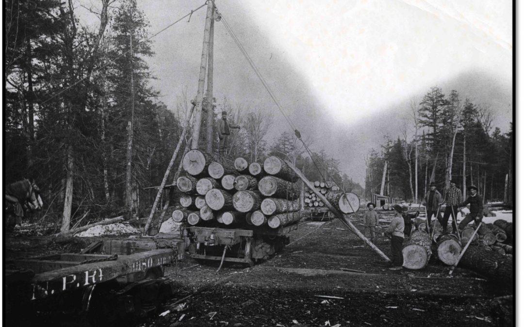 Danger in Apostle Island Logging