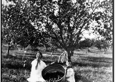 Bayfield Farming – A Success – 1871