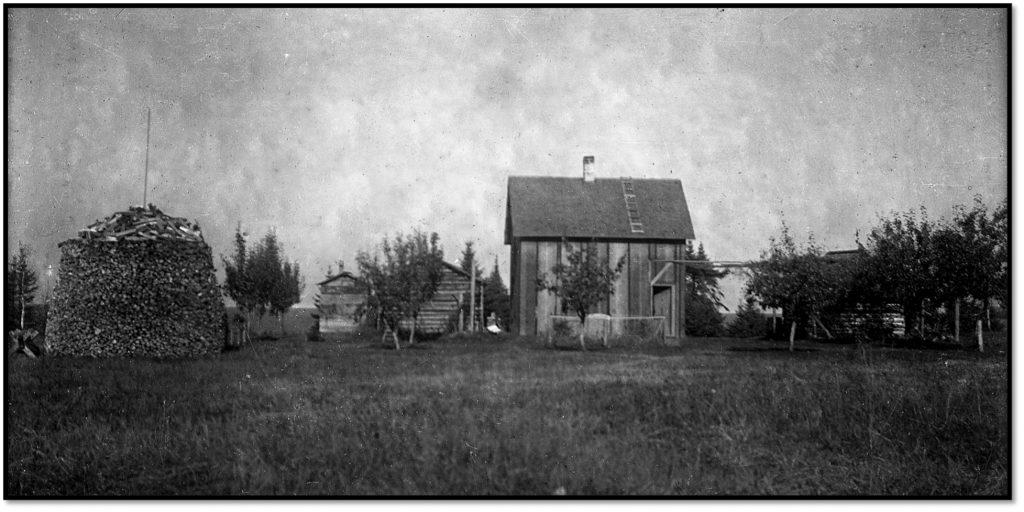 Bayfield County Sand Island WI Farm ca 1906 BHA 2012 FIC 130
