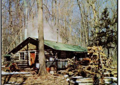 Pinehurst Maple Sugar Camp – The Sugar Bush