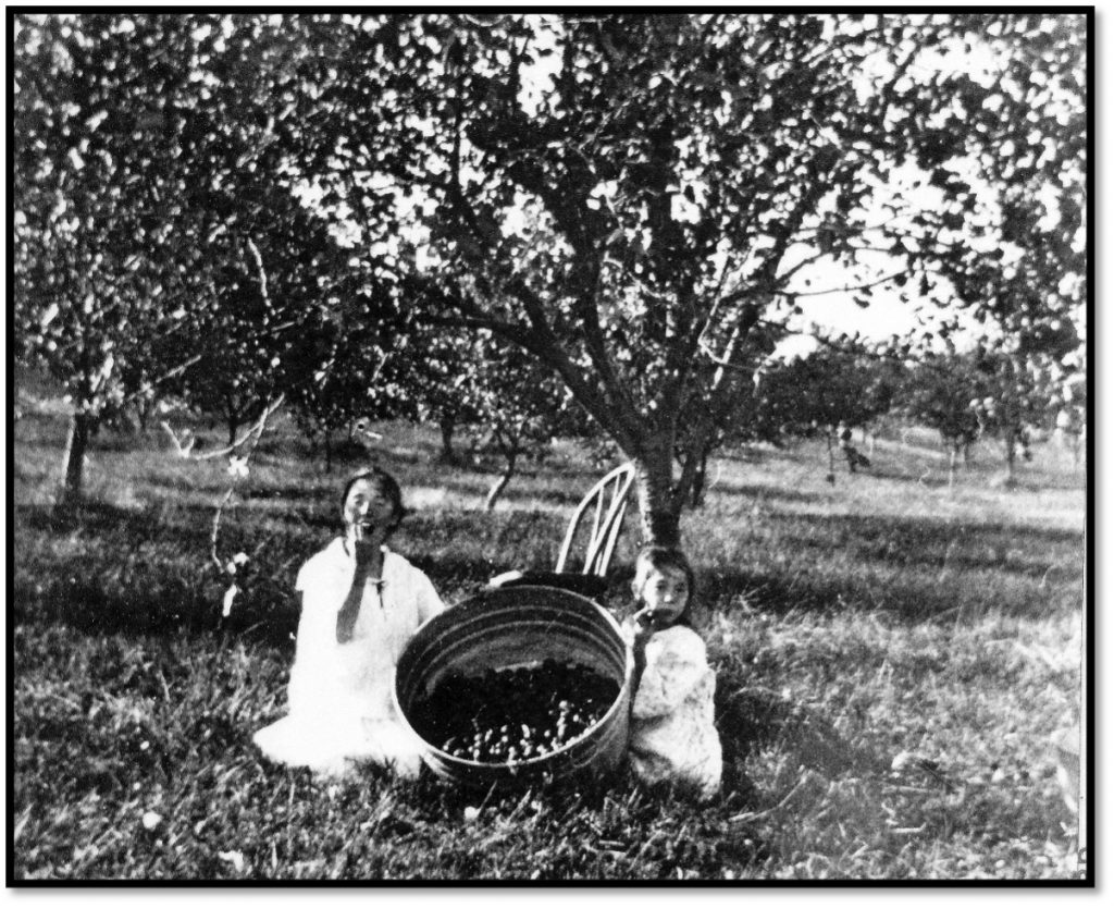 Children in an orchard holding a basket of fruit 1910